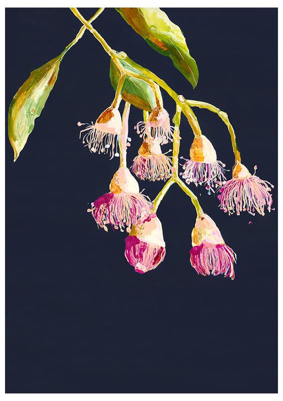 Grotti Lotti_grotti flowering gums